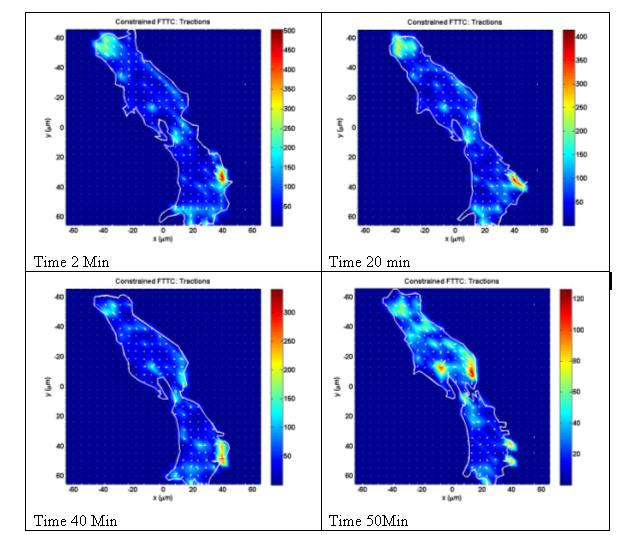 Temporal and Spatial distribution of RMS traction.
