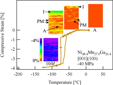 Fig 2. In-situ DIC measurements of meso-scale strain field evolution through the two-stage strain-temperature response.